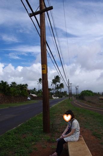 ハワイ10