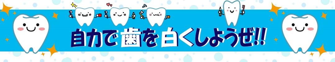 ホームホワイトニングのすすめ ~自力で歯を白くしようぜ!~