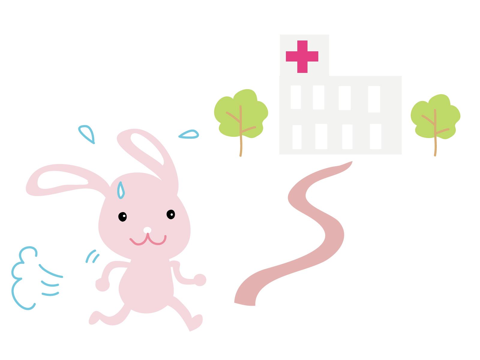 うさぎを診てくれる病院~病気や怪我をした時に頼れる獣医さんの探し方~