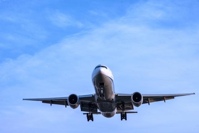 うさぎ・犬・猫などのペットを飛行機に乗せる方法~夏休みなど長期休暇の旅行で航空機を使う場合~