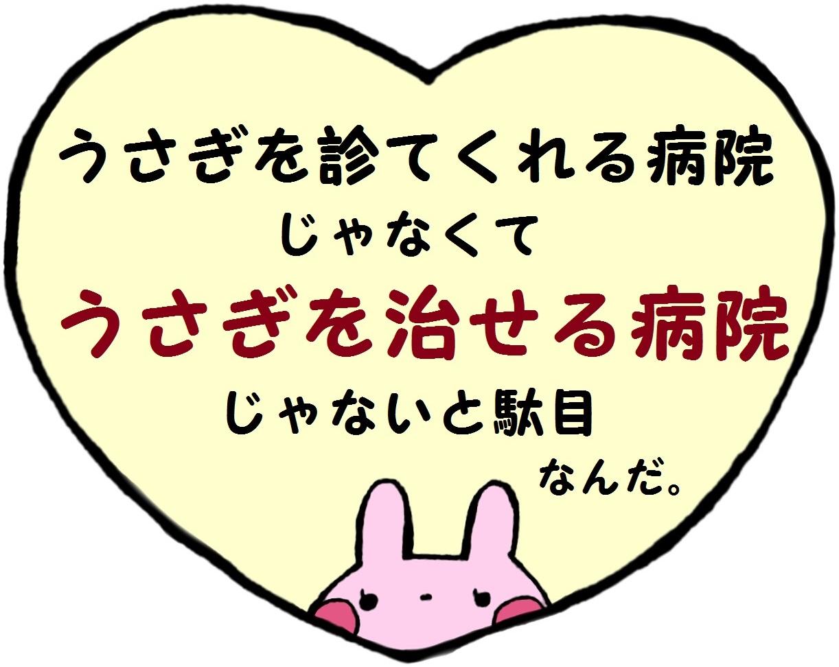 ウサギを診察できる病院