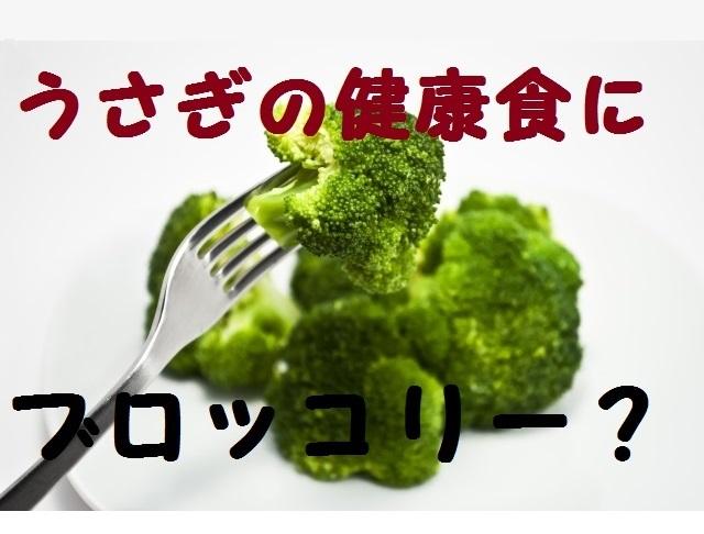 うさぎにブロッコリーが良いって本当?サプリメントにも使われる野菜